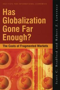 Has Globalization Gone Far Enough? The Costs of Fragmented Markets