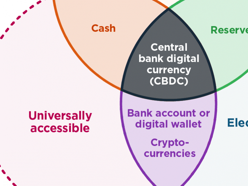 How are central bank digital currencies different from other payment methods?