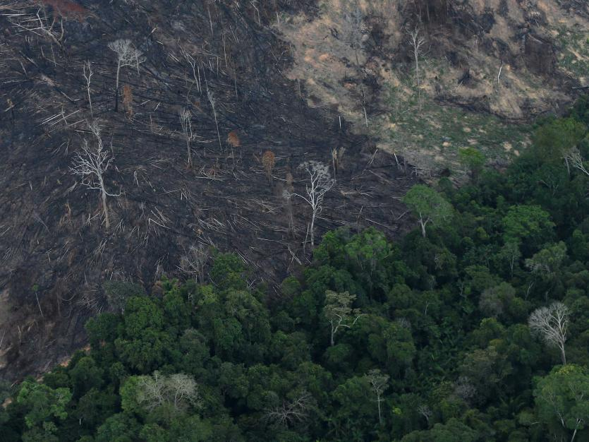 An aerial view of a tract of Amazon jungle after it was cleared by farmers in Itaituba, Para, Brazil September 26, 2019. REUTERS/Ricardo Moraes
